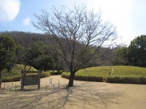 20090318-7.jpg
