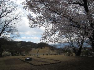 20090326-7.jpg