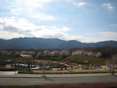20090328-3.jpg
