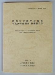 20090523-7.jpg