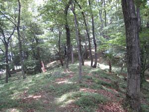 20090709-11.jpg
