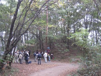 20101029-11.jpg