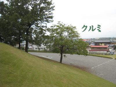 20101029-30.jpg