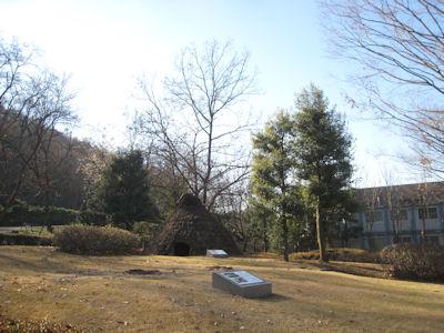 20101214-19.JPG