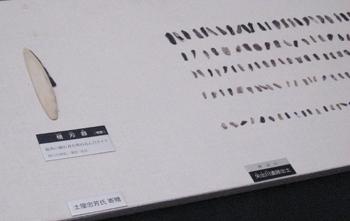 20110309-6.jpg
