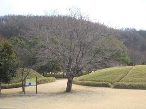 20110330-1.jpg