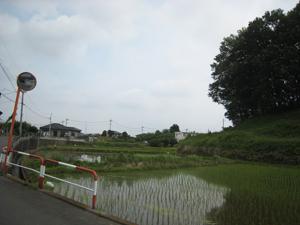 20110721-14.jpg