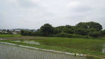 20110721-8.jpg