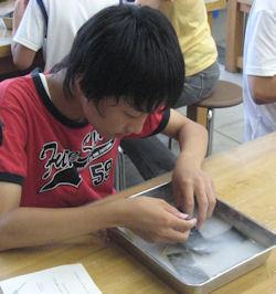 20110808-15.JPG