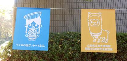 20121113-8.JPG